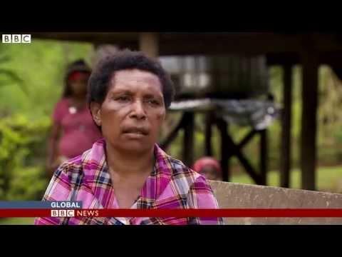 BBC News - Papua New Guinea: Winning the fight against malaria