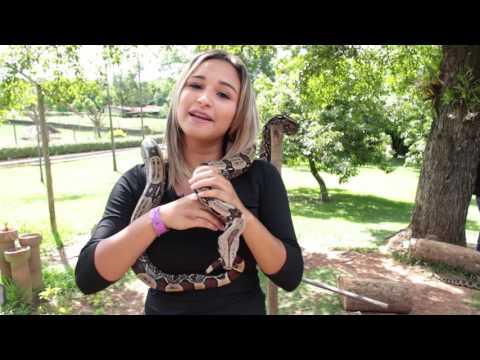 Vale Verde Parque Ecológico e Alambique