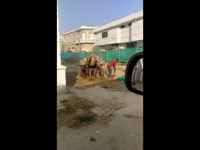 Denuncian robo de material para obras de adoquinado en Ciénaga