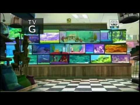 Fish Hooks Intro/ Theme Song