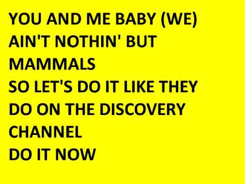 DISY CHANNEL lyrics