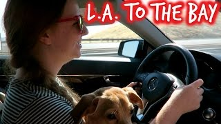 ROAD TRIPPING UP THE WEST COAST | SISTER SUMMER