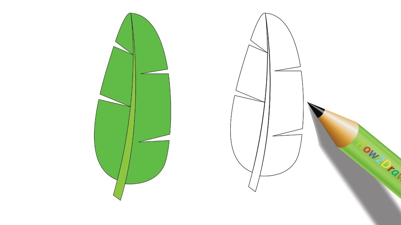 Outstanding Banana Leaf Coloring Page Composition - Framing Coloring ...