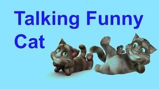 देखोगे तो पेट भरकर हसोगे  Talking tom funny Cat videos   latest funny video 2017   tom in hindi 11