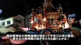 あきる野 阿伎留神社祭礼【西多摩新聞AR動画】