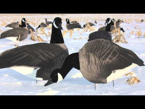 White Rock 3D Headed Honker Silhouette Decoys | Quick Preview