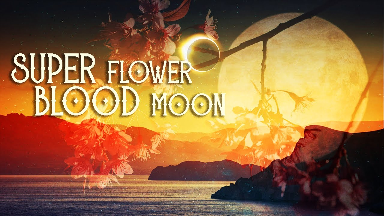 Teach your kids about the Super Flower Blood Moon lunar eclipse of ...