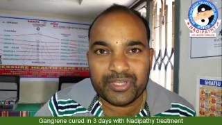 Gangrene cured in 3 days with Nadipathy treatment