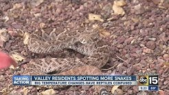 Valley residents spotting more snakes