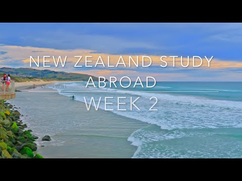 New Zealand Study Abroad : Week 2