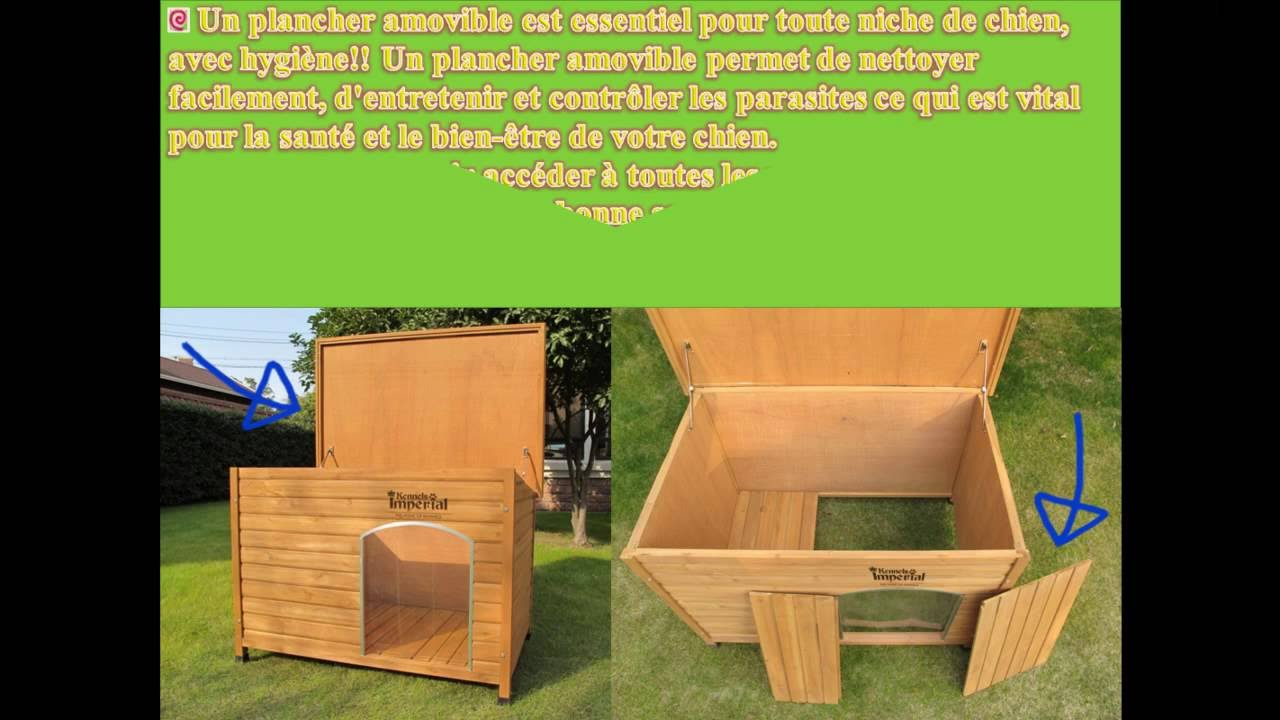 la meilleur niche pour grand chien youtube. Black Bedroom Furniture Sets. Home Design Ideas