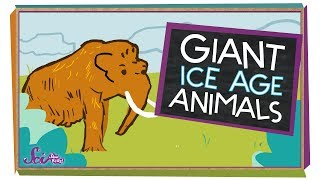 5 Giant Ice Age Animals | Natural History for Kids