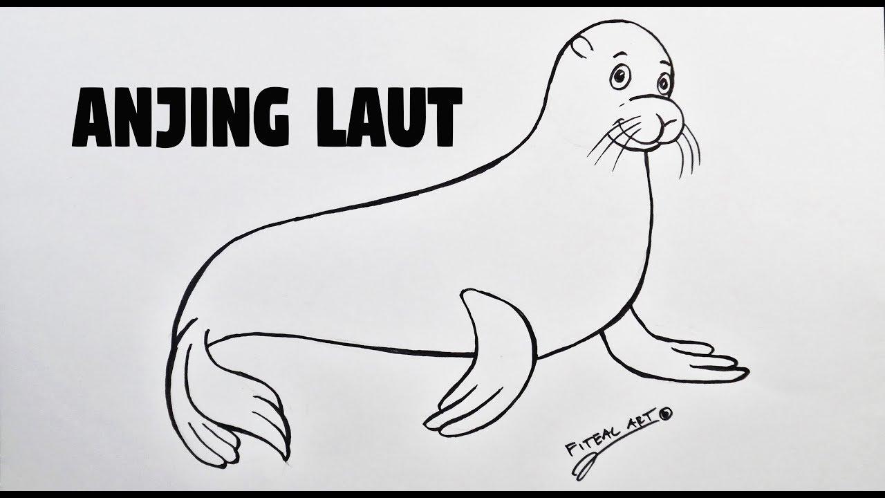 Cara Menggambar Anjing Laut Untuk Anak Paud Dan Tk Youtube