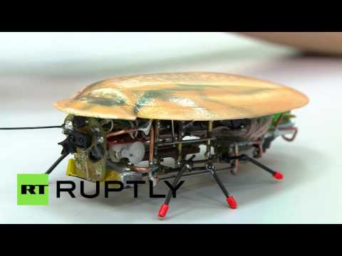 100% manmade roaches: Russian scientists create miniscule robots to tackle great tasks