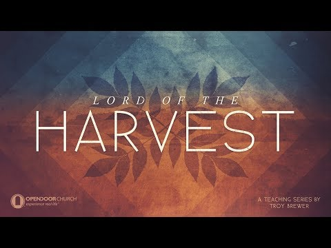 The Terrible Parable of burning the harvest field