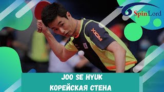 Корейская стена в настольном теннисе - Joo Se Hyuk