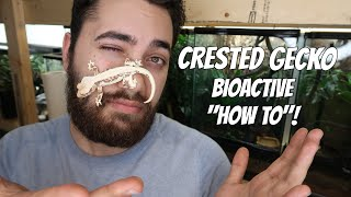 Crested Gecko Bioactive Terrarium | HOW TO MAKE