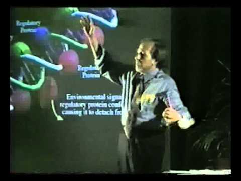 Biology of Belief - by Bruce Lipton HUN2