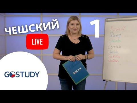 Обучение в Чехии. Отзыв студента GoStudy. Чешский технический университет в Праге.