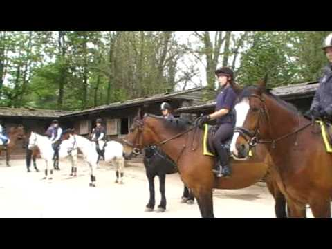 Official Kingston Maurward College Equine video