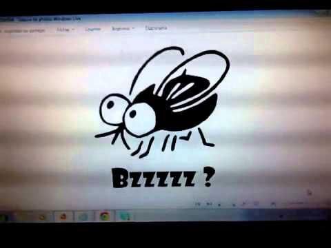 """Résultat de recherche d'images pour """"mouche volée"""""""
