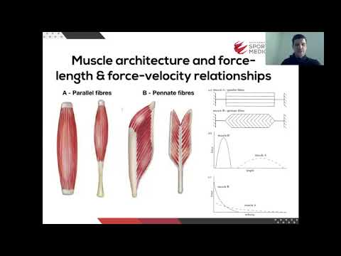 The Calf Complex Rehabilitation & Return to Performance with Colin Griffin