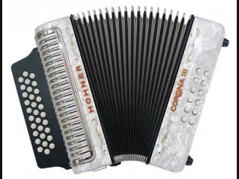 Hora instrumentala acordeon de joc rupere