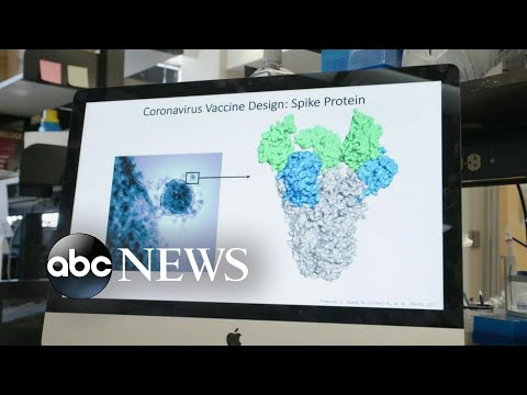 Home researchers working furiously to learn how a vaccine for the coronavirus works | ABC News Prime