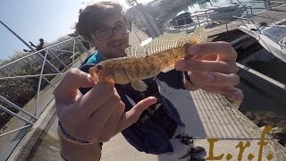 Light Rock Fishing con gente esperta!