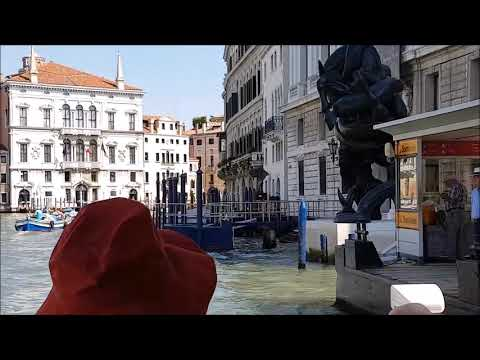 A compilation of our videos from Venice from June 2017