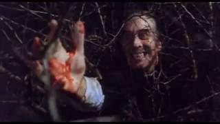 Video Dracula vs Van Helsing download MP3, 3GP, MP4, WEBM, AVI, FLV Oktober 2018