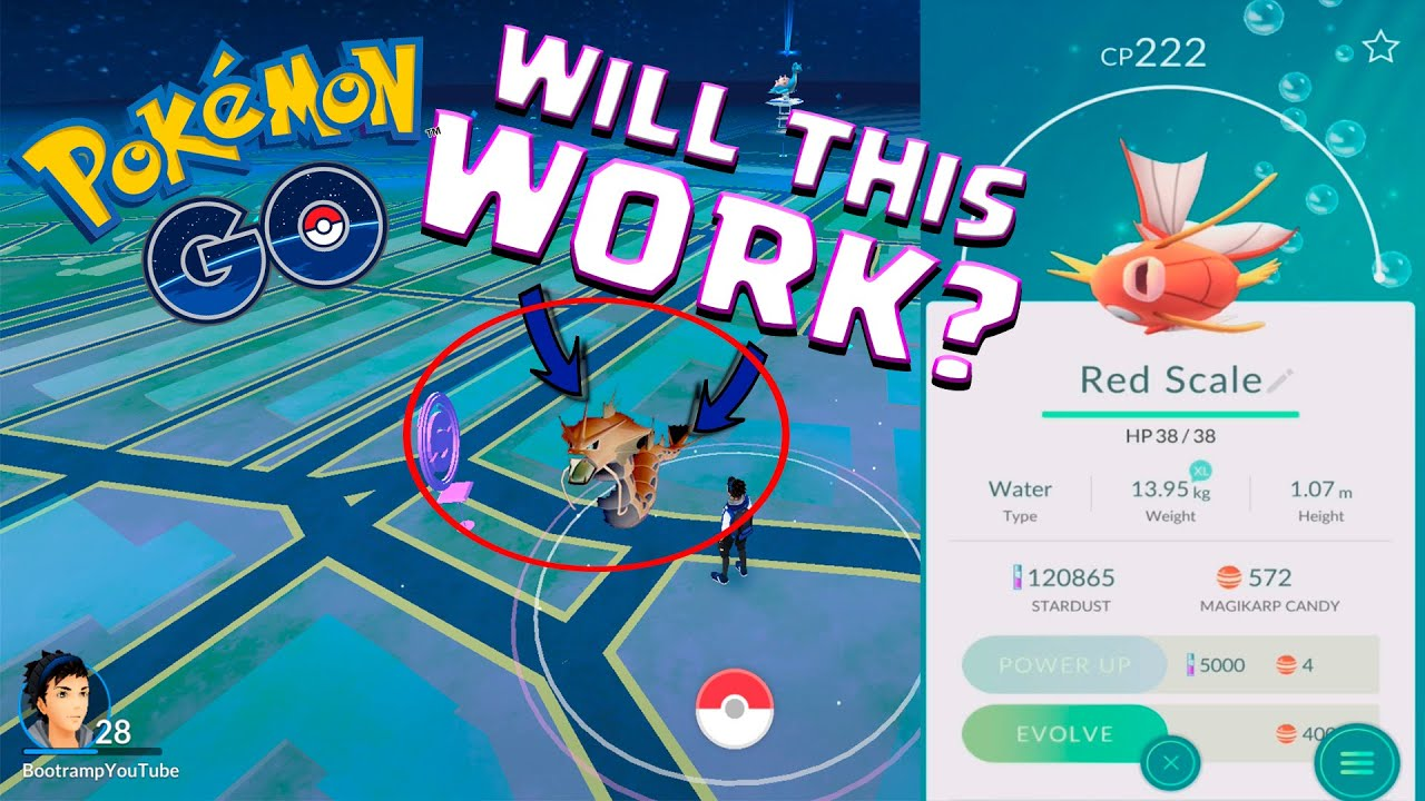 Will This Work Pokemon Go 222 Cp Magikarp Evolves