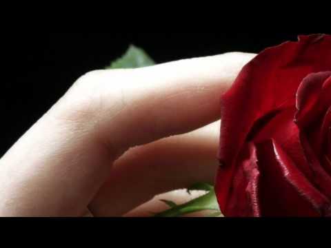 ~•~Yasmin Levy~•~  La Alegria HD 1080p