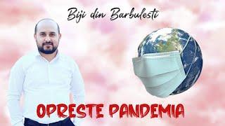 Biji din Barbulesti - OPRESTE PANDEMIA  ( Video Official 2020 ) Cover