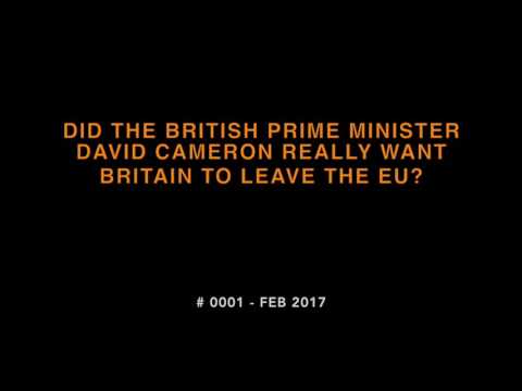 #1 Did the British Prime Minister David Cameron really want Britain to leave the EU?