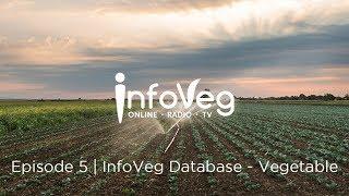 InfoVeg TV - Episode 5 | InfoVeg Database - Vegetable