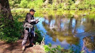 Это какой то праздник Щука с каждого заброса Рыбалка на красивом лесном озере