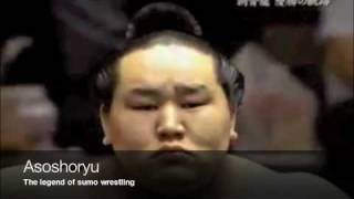 asoshoryu the legend of the sumo wrestling