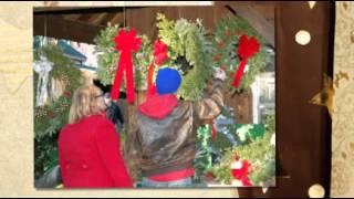 A Christmas Tree Experience