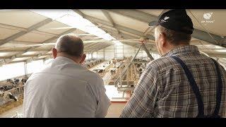 Budowa obory, kurnika, chlewni – jak wygląda proces inwestycyjny? - Agra Matic | De Heus