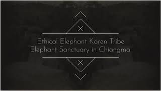 Funny Day @Ethical Elephant Karen Tribe