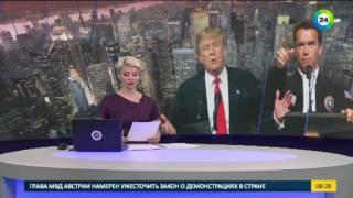 Трамп пожурил Шварценеггера за низкие рейтинги шоу «Кандидат»   МИР24