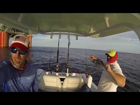 Gulf Of Mexico Tuna Fishing ADSFR 2019