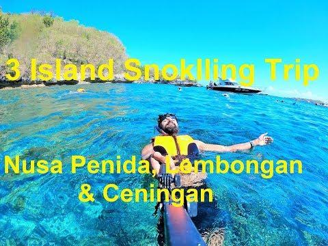 best-snorkeling-place-bali-|-3-island-cruise-:-nusa-lembongan,-nusa-penida-nusa-ceningan-#ggcontest
