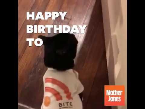 bite-podcast-s-very-first-birthday