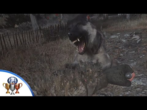 Call of Duty 4 Modern Warfare Remastered - Dogs. I Hate Dogs Trophy (Knife 20 Dogs Farming Spot)