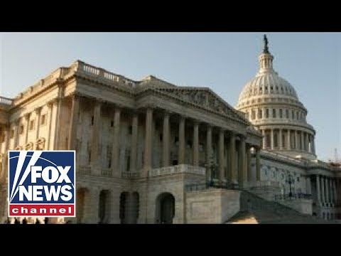 Republicans and Democrats plan election strategy