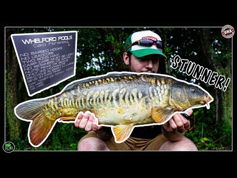 WHELFORD POOL **Carp Fishing**