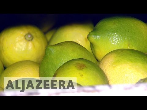Uncertainty in Argentina as US stalls lemon imports