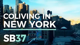 COLIVING IN NEW YORK | SB37